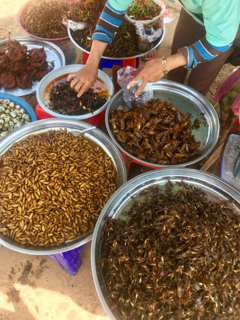 Cambo Challenge Eat Insects Challenge
